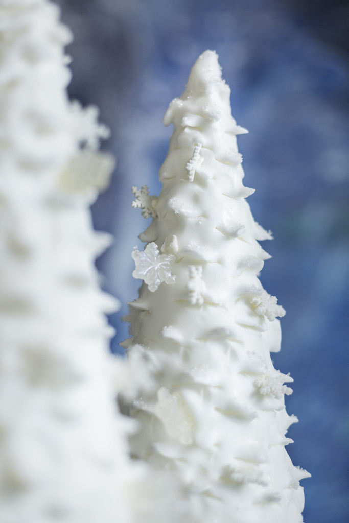 Natale Irene Cake Design